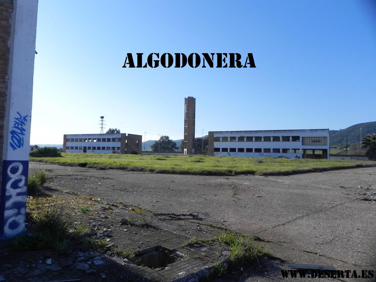 Algodonera