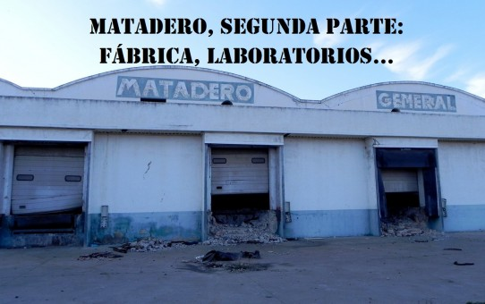 Matadero Primayor segunda parte